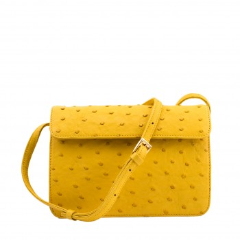 Yellow  Lexy